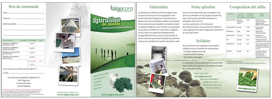 Algocorp mise en page flyer