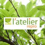 Atelier Repro - mise en page