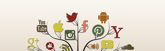 La taille des images sur les réseaux sociaux