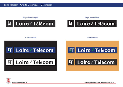 Loire Telecom - CharteGraphique creation