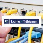 Loire Telecom logo et charte graphique