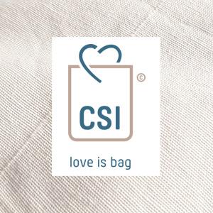 CSI mise en page site web