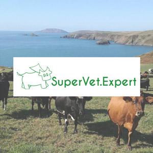 SuperVet site web e-commerce herbignac 44