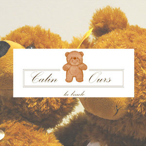 montage photo slides site e-commerce la baule Calin Ours